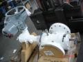 Twin seal con attuatore rotork.jpg